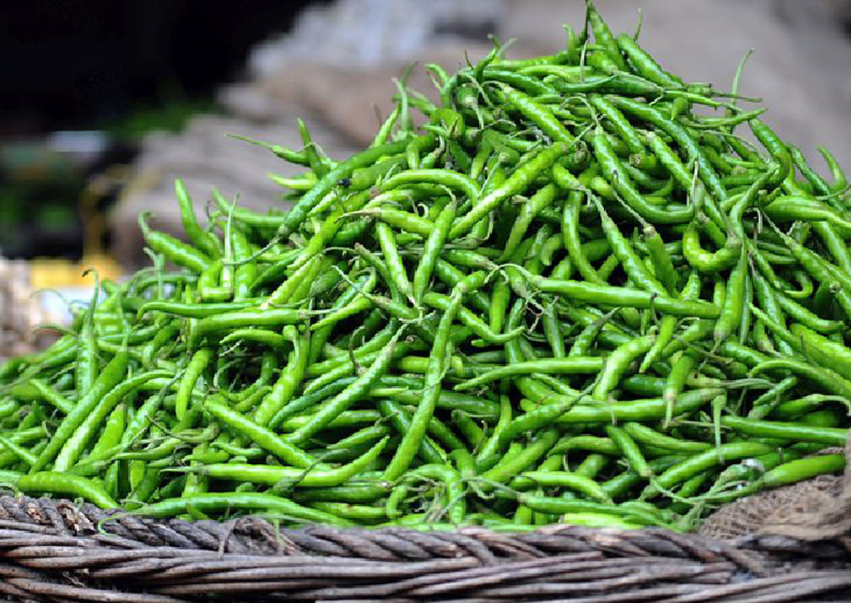 More than 10 health benefits of green chillies