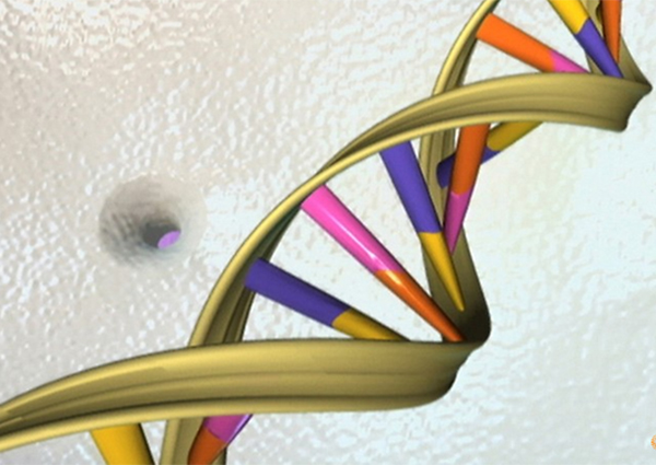 Scientists now able to 'edit' disease gene in human embryos