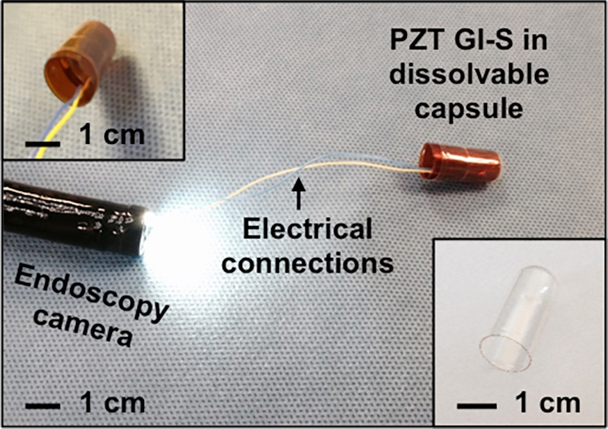 Researchers develop digestible sensors for monitoring the gastrointestinal tract
