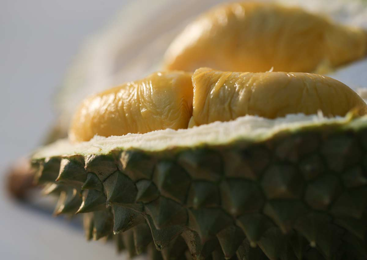 Surprising benefits of eating durian