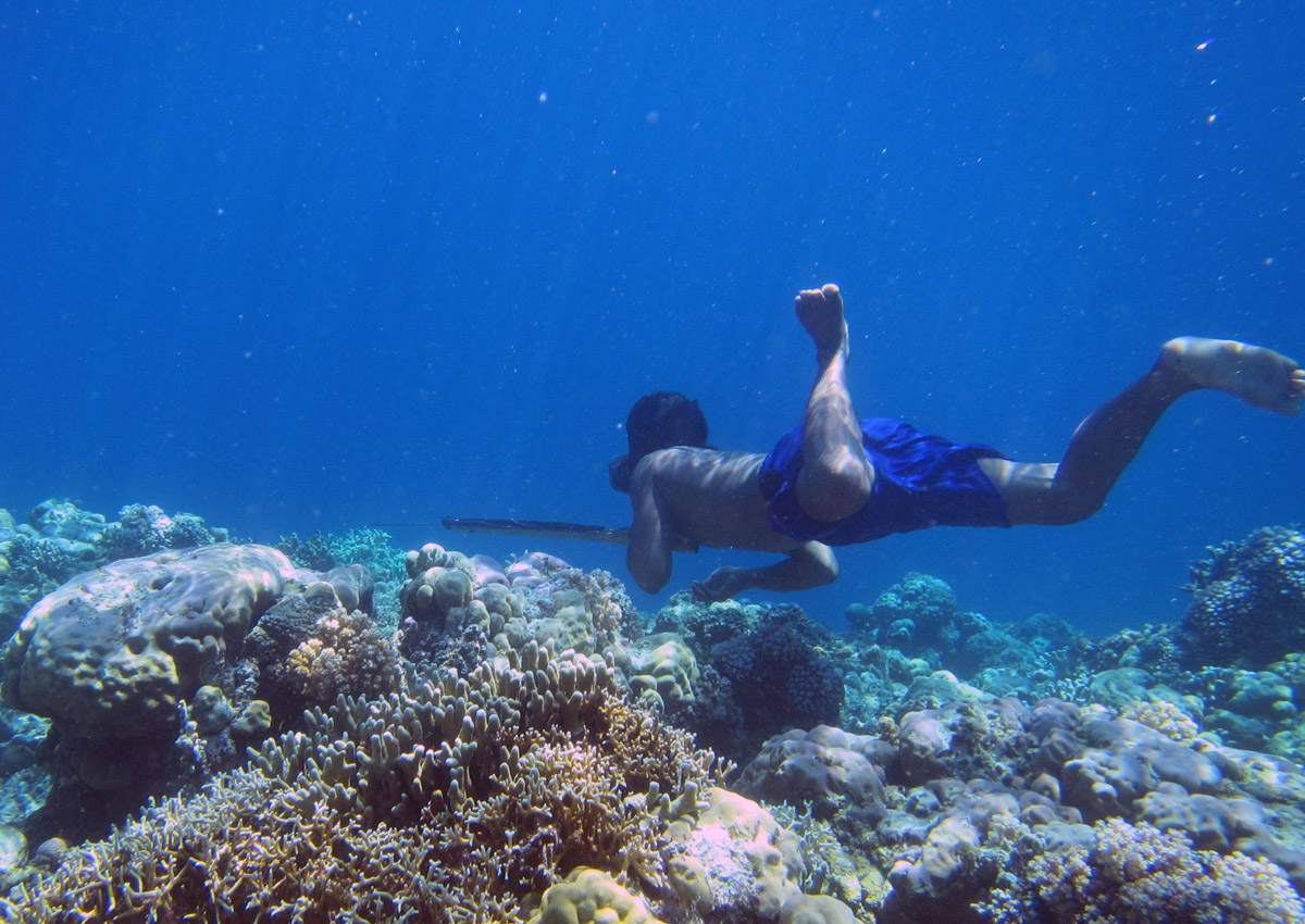 First genetic adaptation to diving discovered in 'Sea Nomads'
