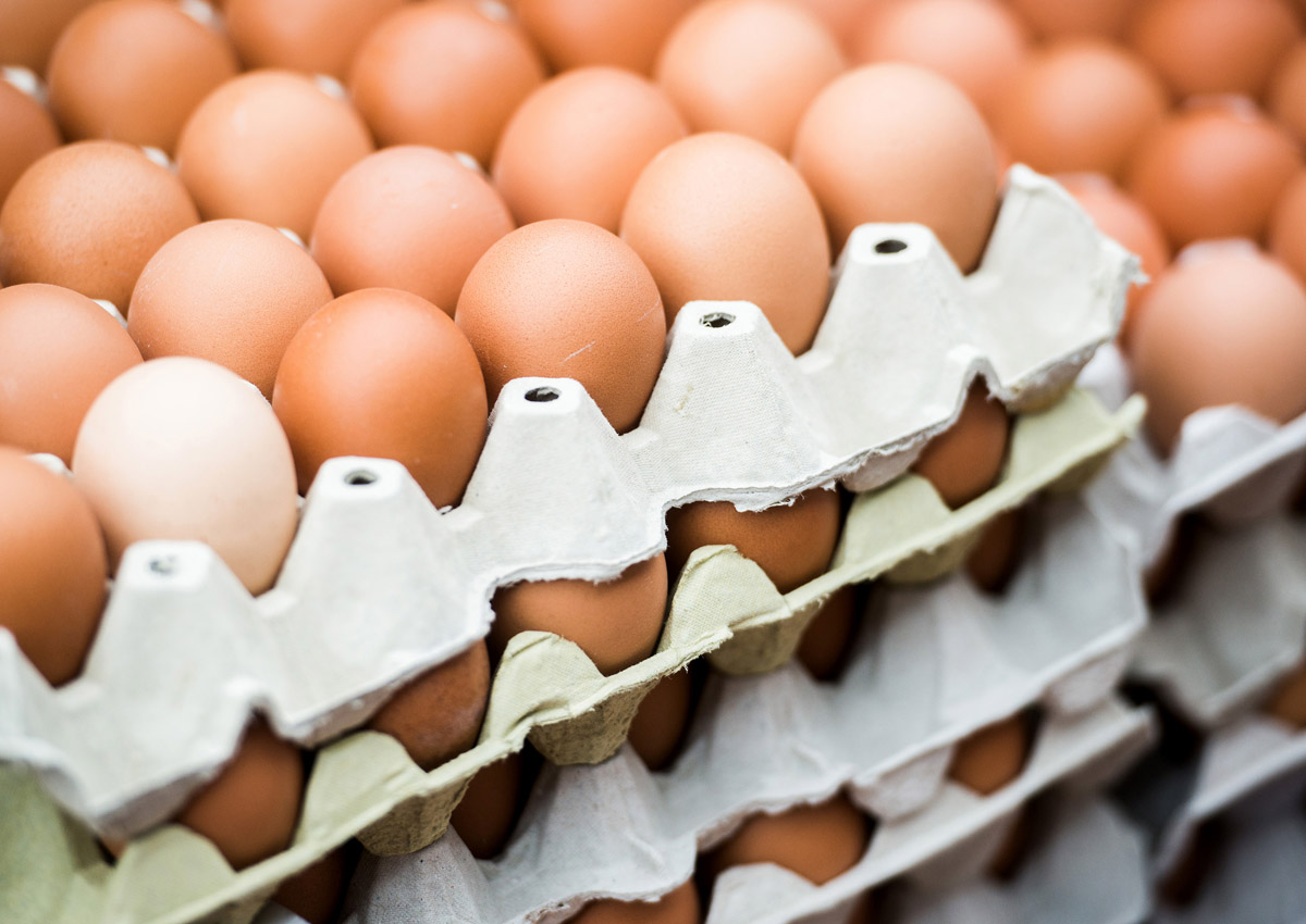 US recalls more than 200 million eggs over salmonella fears