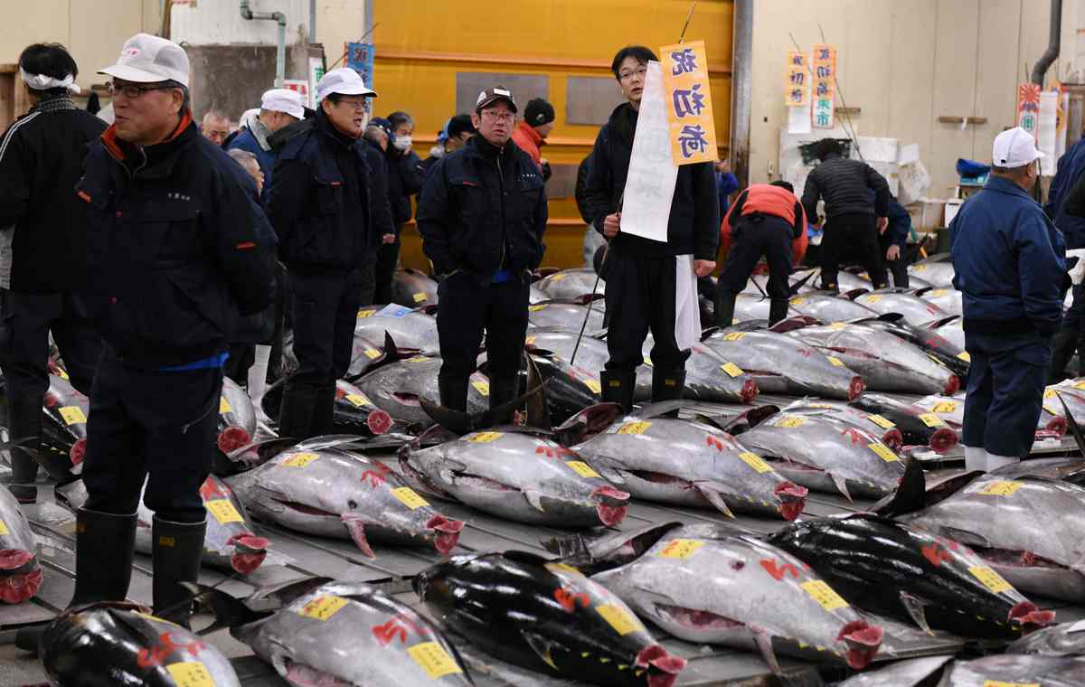 Japan's Tsukiji fish market to stop tourist tuna viewings as it prepares to relocate